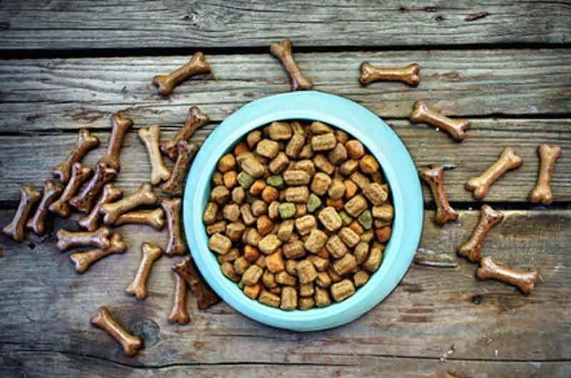 Getreidefreies Hundefutter trocken