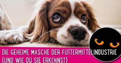 Hundefutter Skandal