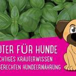 Kräuter für Hunde - Wichtiges Kräuterwissen zur artgerechten Hundeernährung 🌿🌿🌿