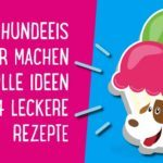 Hundeeis selber machen – tolle Ideen + 4 leckere Rezepte 🍦
