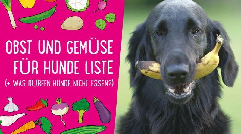 Obst und Gemüse für Hunde