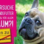 Tierversuche für Hundefutter – wie, was & vor allem: warum?! (+ PETA-Liste Hundefutter ohne Tierversuche)