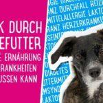 Hundekrankheiten - Wie die Ernährung Hundekrankheiten beeinflussen kann