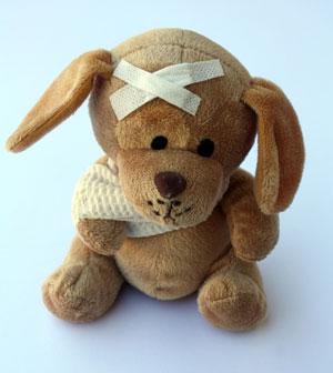 Lebererkrankung-beim-Hund-Symptome