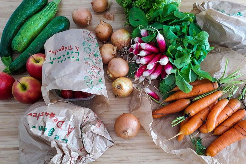 Wie muss ich Obst und Gemüse beim BARFen zubereiten?