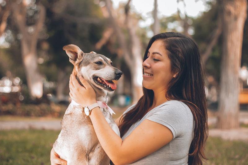Read more about the article Homöopathie für Hunde: Diese Mittel gibt es